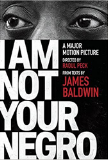 I Am Not Your Negro book cover