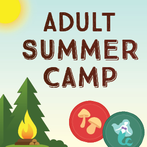 Adult Summer Camp Icon